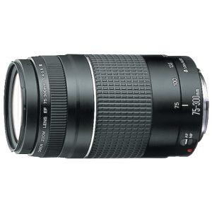 Objetivo Canon EF 75-300 mm