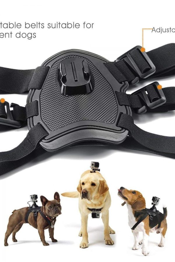 Pechera canina para cámaras deportivas GoPro