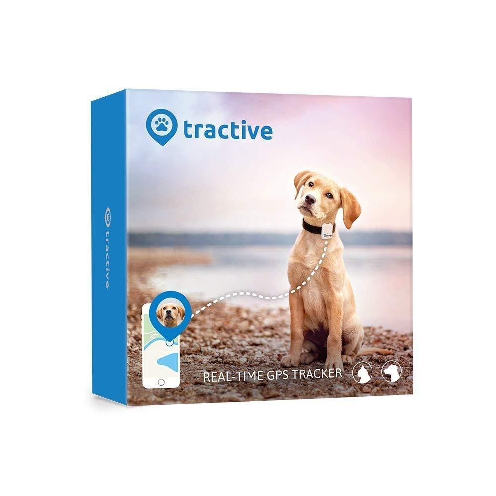 Rastreador GPS para mascotas Tractive