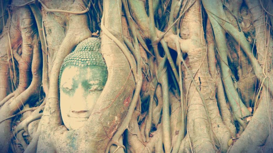 Wat Phra Mahatat - Ayutthaya