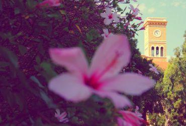 Alojarse en Beirut - Hamra