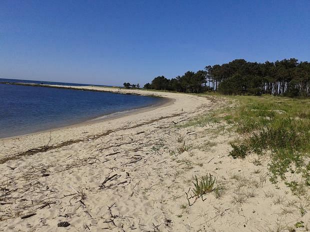Playa de Armona