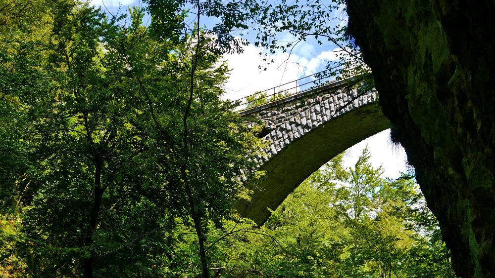 Naturaleza y puente.jpg