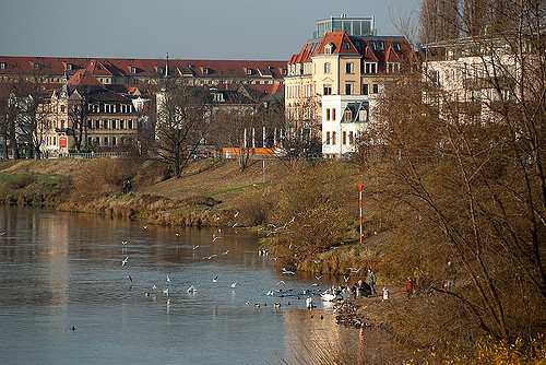 Best areas to stay in Dresden - Pieschen