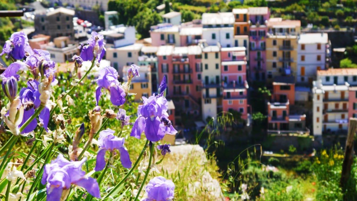 Best areas to stay in La Spezia to go to Cinque Terre