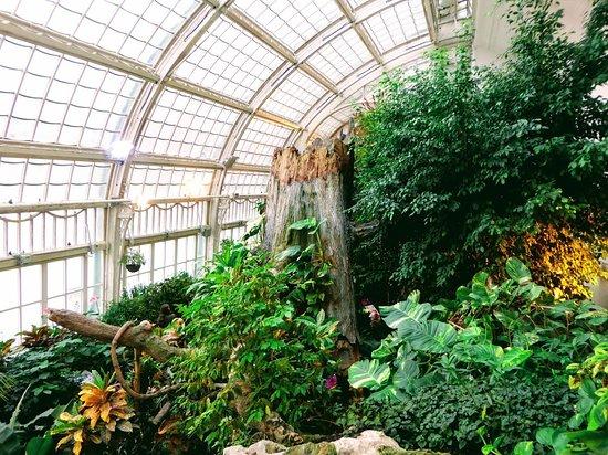 Casa de las mariposas de Viena